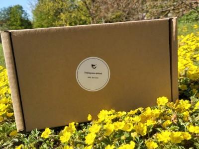 Dėkingumo dėžutė